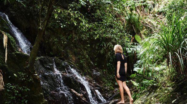 Explore the Surrounding Rainforest