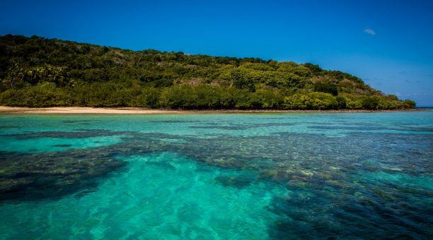 The Island's Fringing Coral Reef