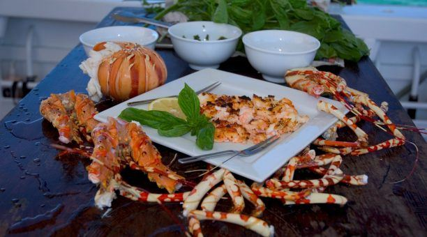First Class Seafood Pulled From the Ocean