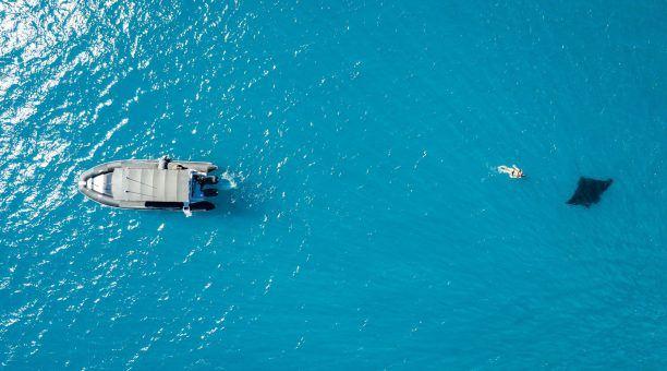 Swimming With a Manta Ray